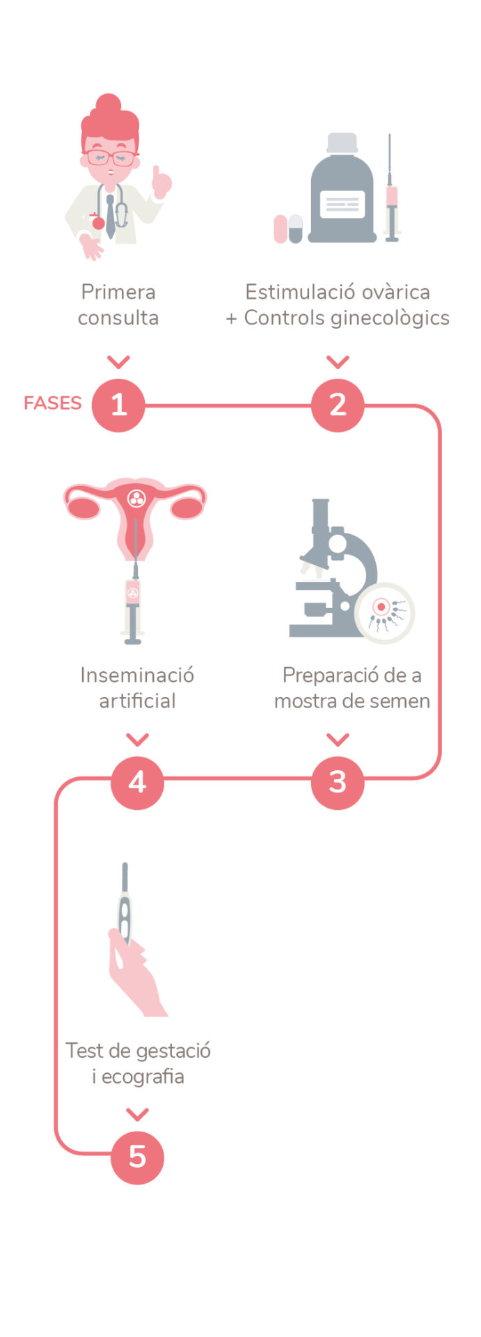 inseminación artificial embriogyn