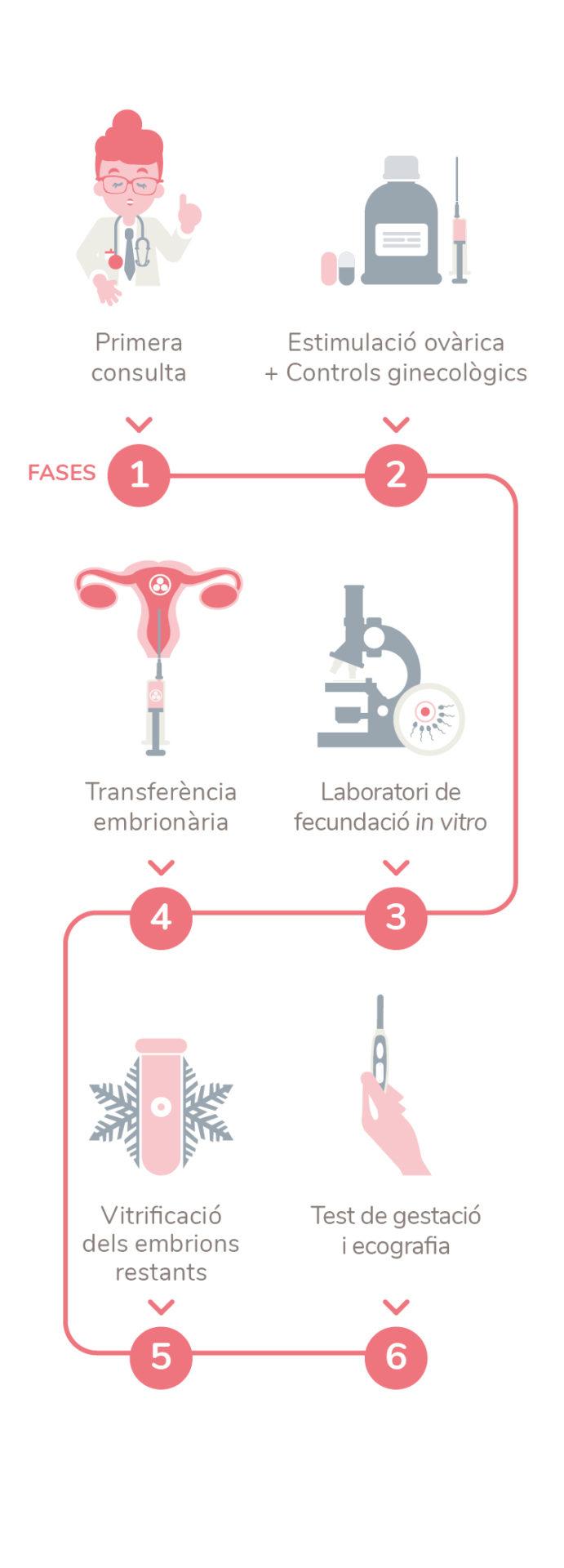 ovodonació embriogyn metode