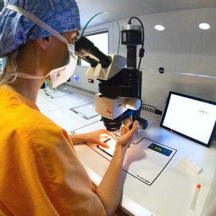 fecundacio-invitro-embriogyn-fase5